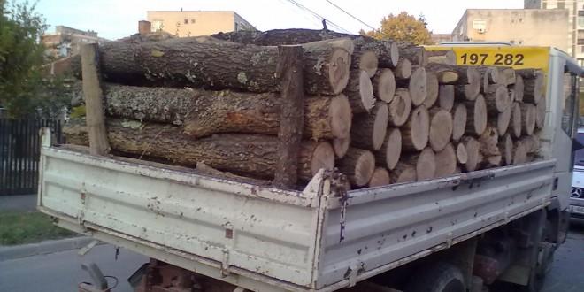 Transport-lemne-de-foc-Cer1