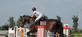 dulugeac-cristina-cupa-equestria