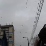 Parada 1 Decembrie 2014 - Suceava (10)