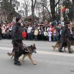 Parada 1 Decembrie 2014 - Suceava (51)